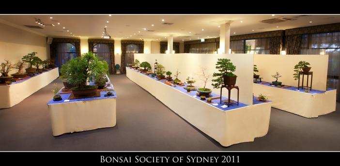 BSS 2011