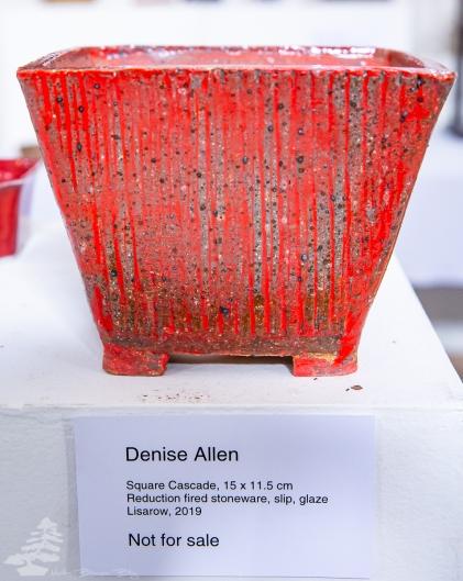 Denise_Allen_Pot_04