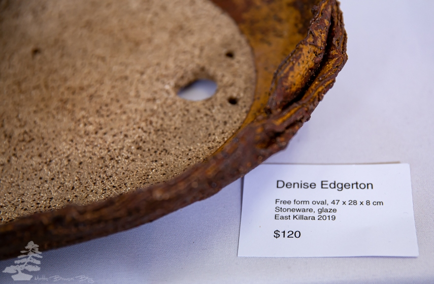 Denise_Edgerton_pot_04