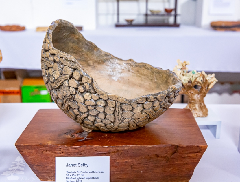 Janet_Selby_Pot_02