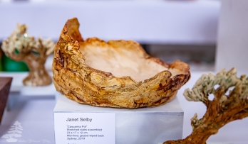 Janet_Selby_Pot_04